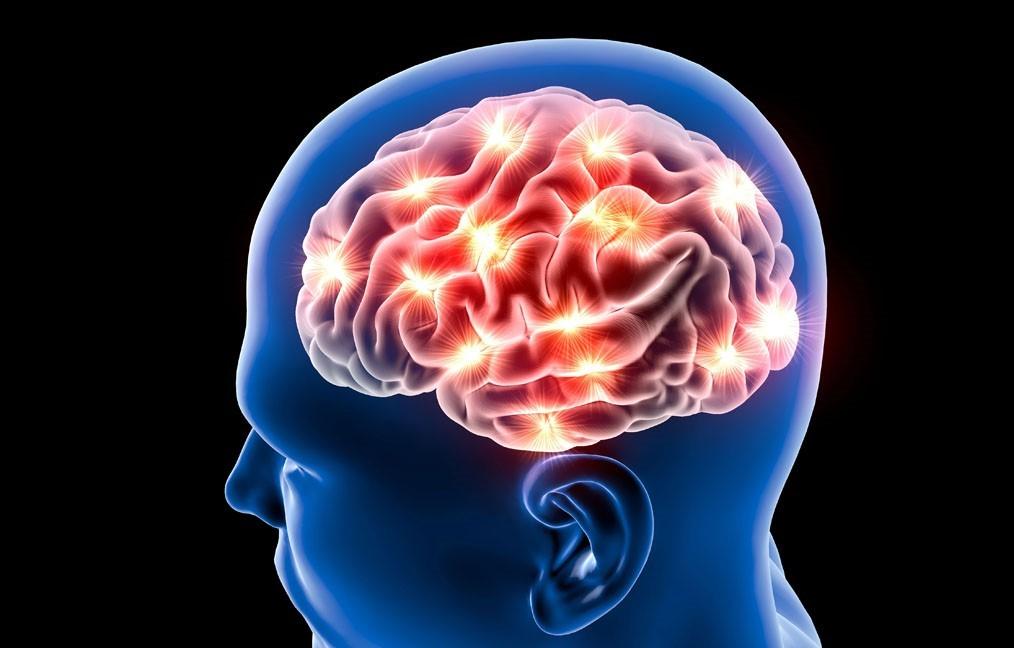 Beyin hücrelerini yenileyen 3 gıda