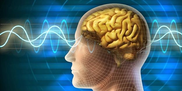 Beyin için hafıza kartı geliştirildi