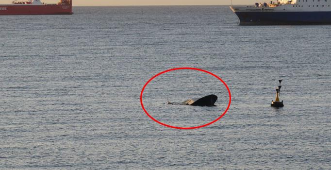 Beylikdüzü Kavaklı Sahili açıklarında bir tekne battı: 1 kayıp