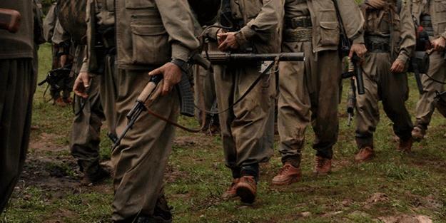 Bir araya gelen Araplar, YPG/PKK'ya karşı harekete geçti