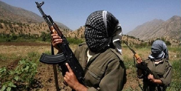 Bitlis'te güvenlik güçlerine taciz ateşi