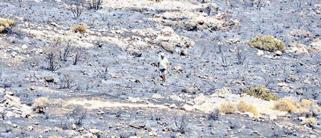 Bodrum'da 20 hektarlık orman kül oldu