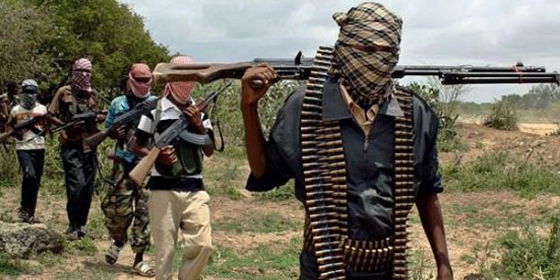 Boko Haram'a ait 5 üs imha edildi