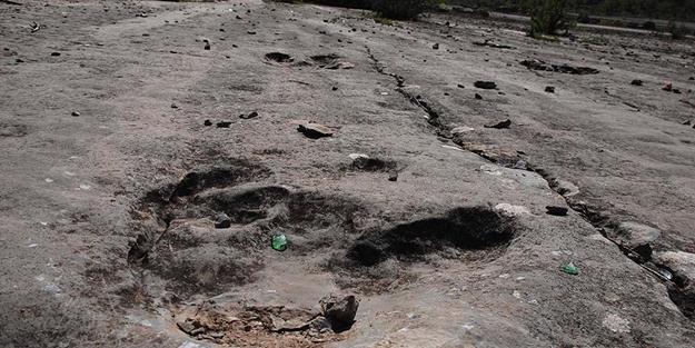 Bolivya'da bulundu! Milyonlarca yıl öncesine ait