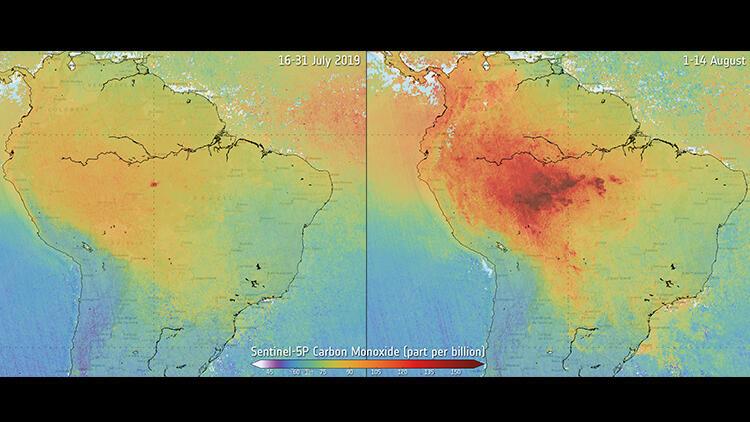 Brezilya'nın Cerrado bölgesinde 10 günde 8 bin yangın çıktı