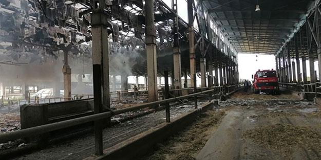 Bursa'daki hayvan çiftliği alev alev yandı