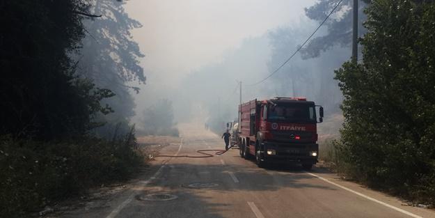 Bursa'da korkutan yangın! Ekipler bölgede