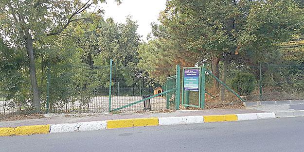 Cami arazisine köpek barınağı