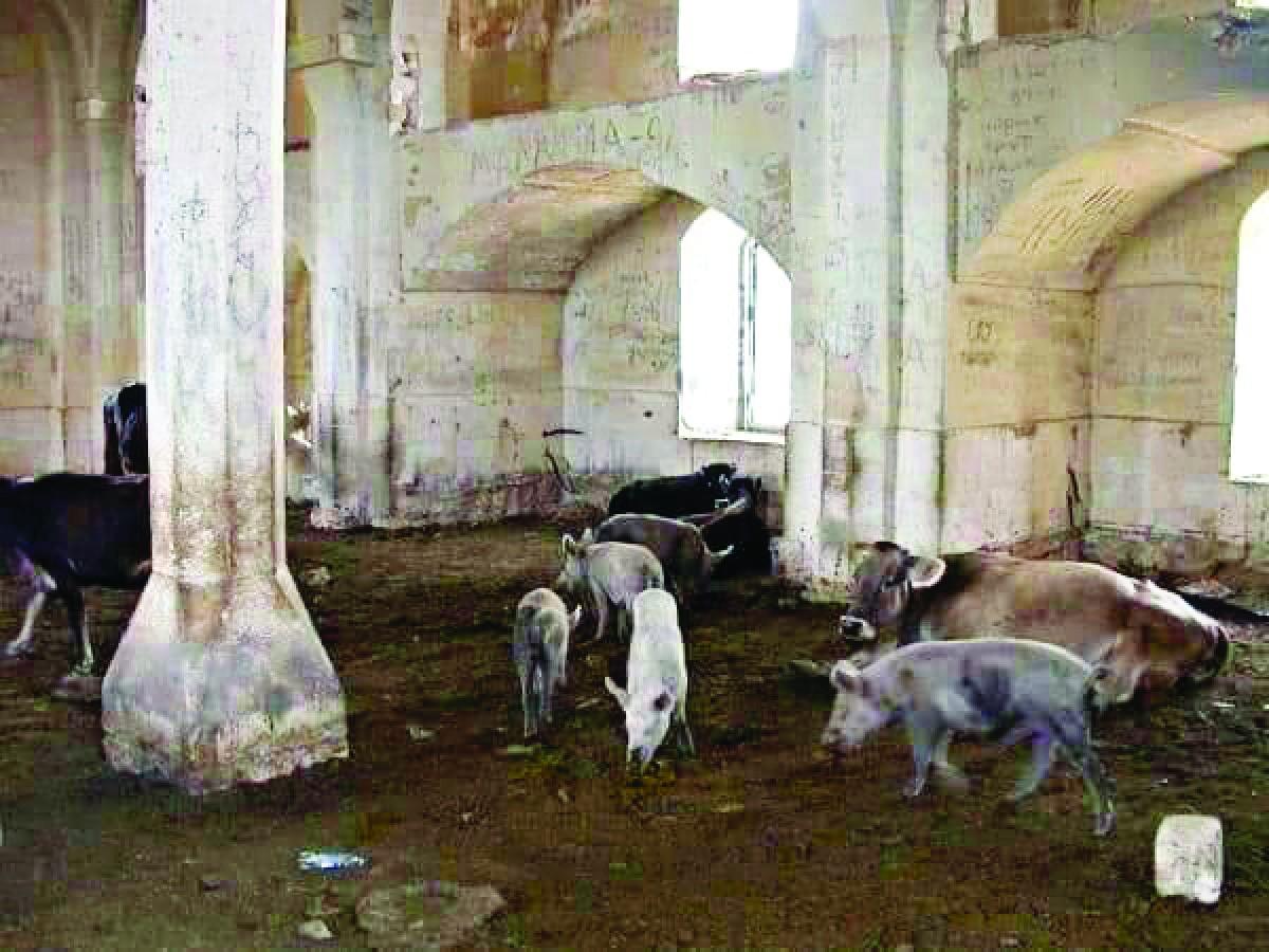 Camiyi domuz ahırı yapmışlar