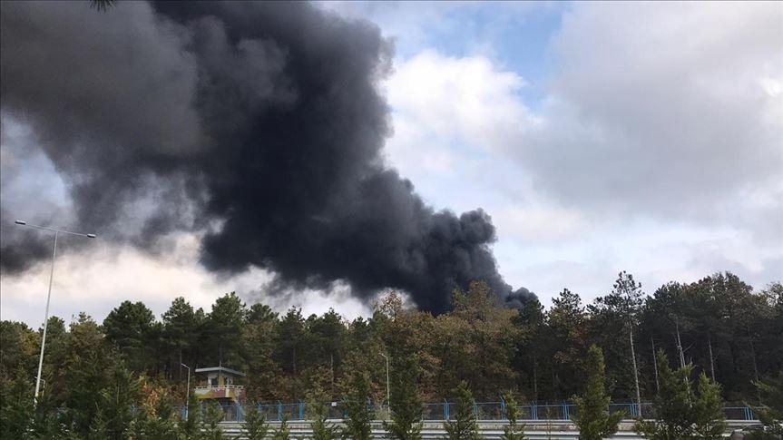Çekmeköy'deki orman yangını kontrol altında