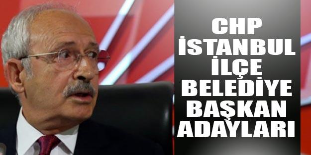 CHP İstanbul ilçe belediye başkan adayları 2019