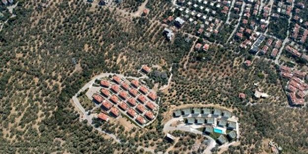 CHP'li belediye villa uğruna 2,5 milyon ağacı katletti