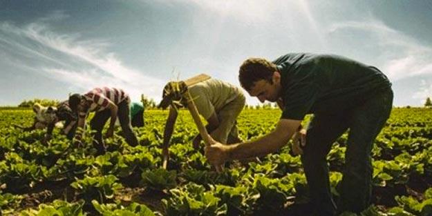 Çiftçi Bağkuru kaç yılda emekli olur