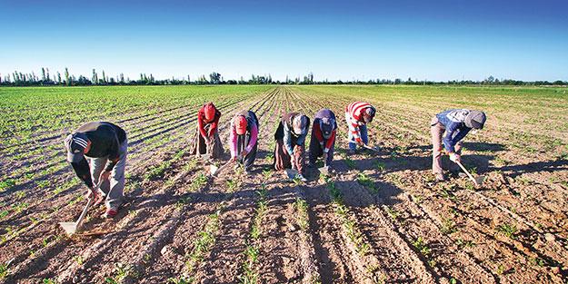 Çiftçimiz üretiyor, ihracatçımız pazarlıyor