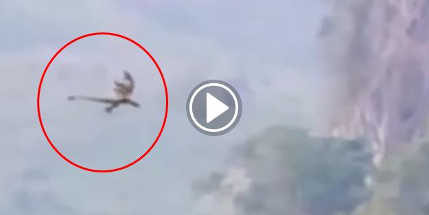 Çin'de ejderha görüntülendi!