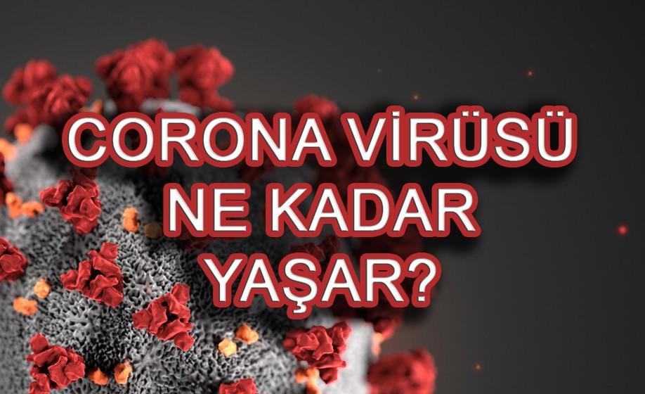 Corona virüsü kaç saat yaşar? Bulunduğu ortamda ne zaman ölür?