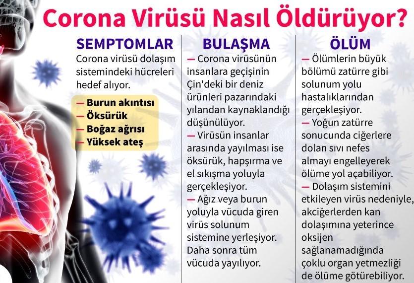 Corona virüsü nasıl öldürür? - Yeni Akit