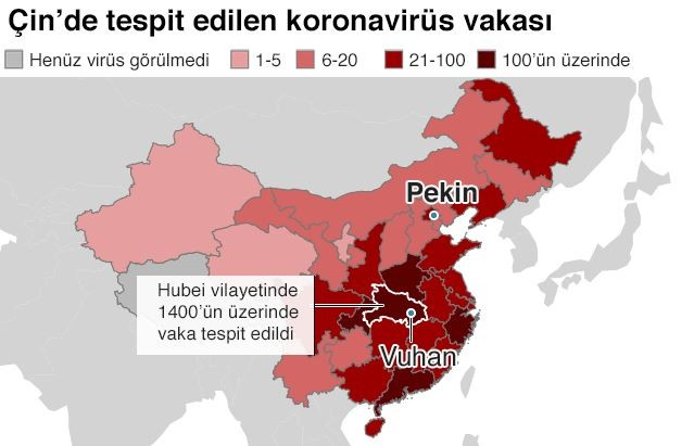 Corona virüsünden kaç kişi öldü? Çin'de son durum!