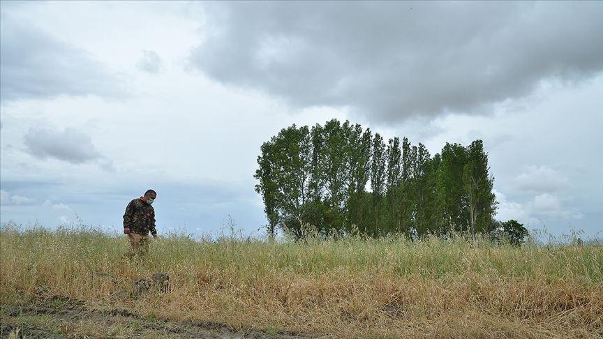 Çorum'da doğa koruma ekipleri ile avcılar 'aslan' izi sürdü