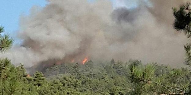 Çorum'da orman yangını kontrol altına alınamıyor