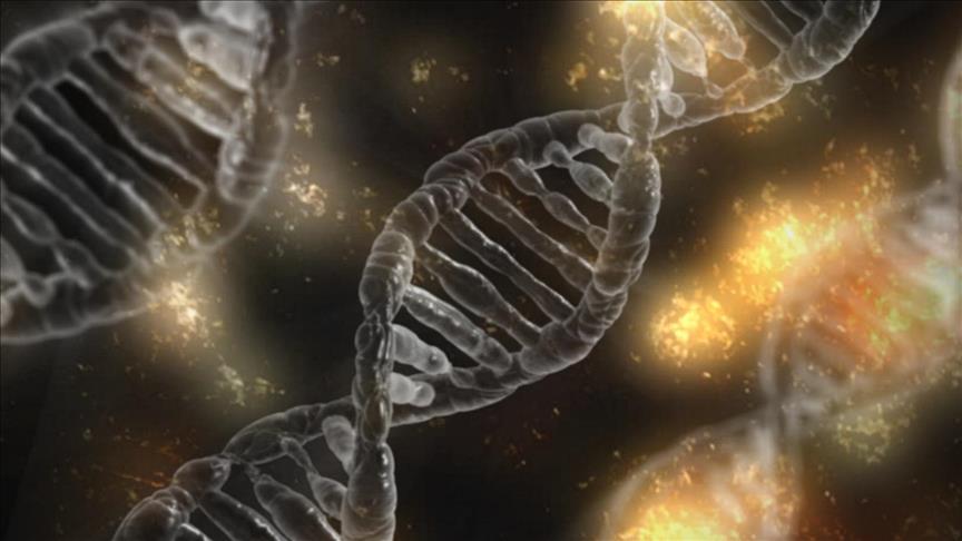 CRISPR İLE DNA YERİNE RNA DÜZENLENEBİLECEK