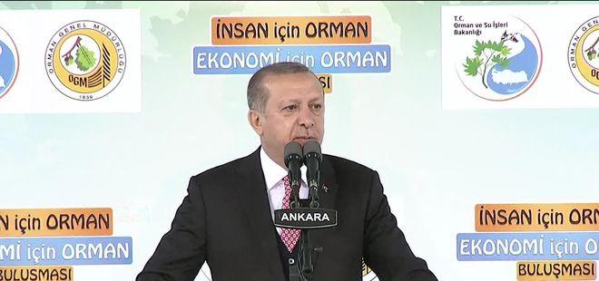 Cumhurbaşkanı Erdoğan: 81 ilde tabiat turizmi seferberliği başlıyor