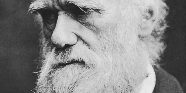 Darwin anavatanında yasaklandı