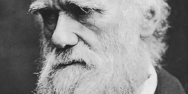 Darwinizm nedir?