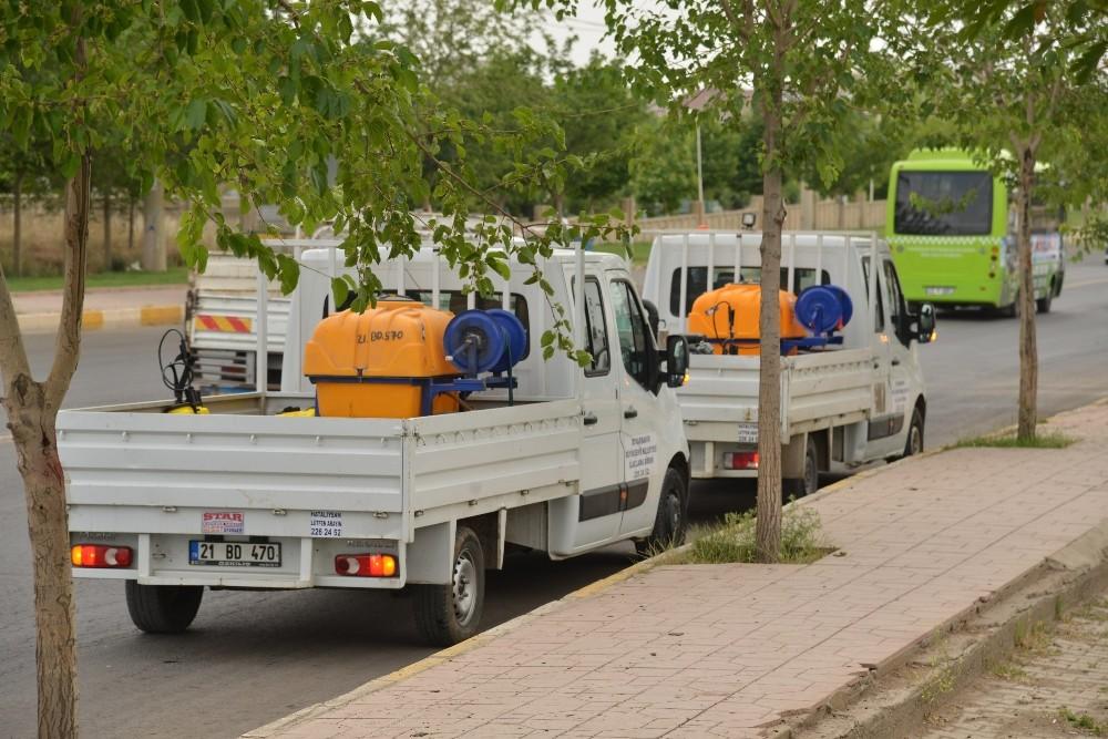 Diyarbakır Büyükşehir Belediyesi, ilaçlama çalışması başlattı