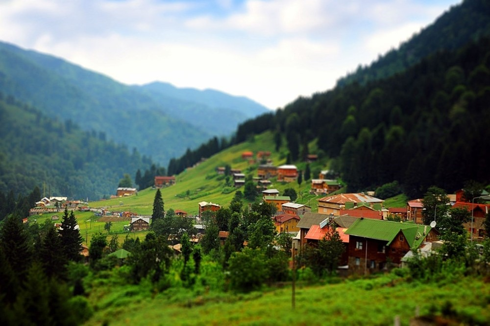Doğu Karadeniz'de 'biyokaçakçılık' uyarısı