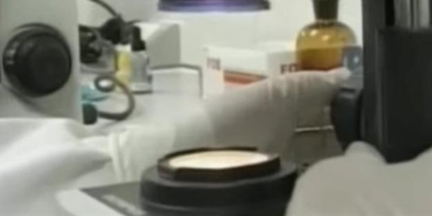 Dünya gündemine bomba gibi düşen görüntüler! 'Bir laboratuvardan gelen son saçmalık'