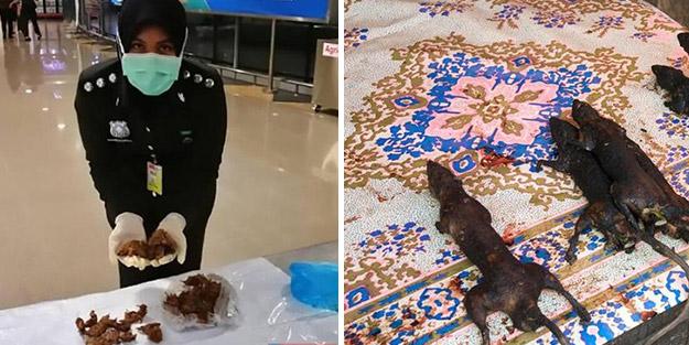 Dünyayı şoka uğratan gelişme! Havalimanında fare etleriyle yakalandı