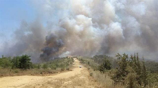 Edirne'deki yangın devam ediyor