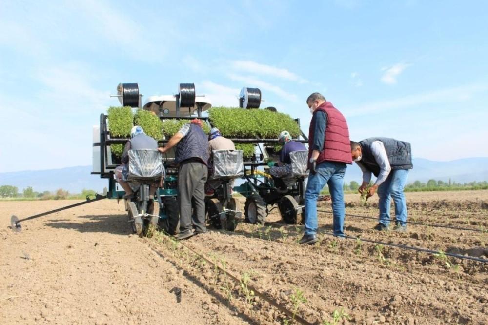 Edremit Belediyesi'nden tarıma ciddi yatırım