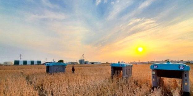 El atmadıkları bir şey yok! Google'dan tarım atılımı