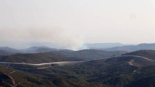 Esed, Türkmendağı'nda ormanları yakıyor