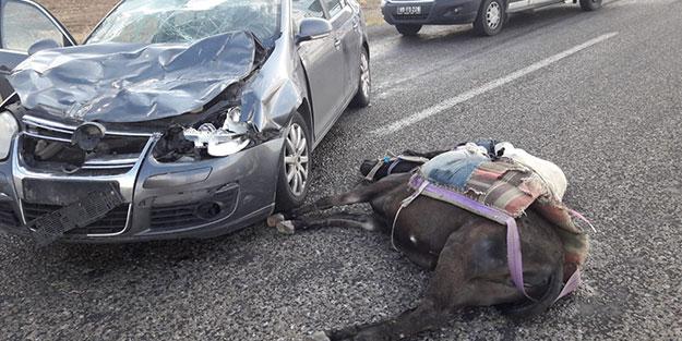 Eşeğiyle karşıya geçecekti! 1 kişi hayatını kaybetti, 3 kişi yaralandı