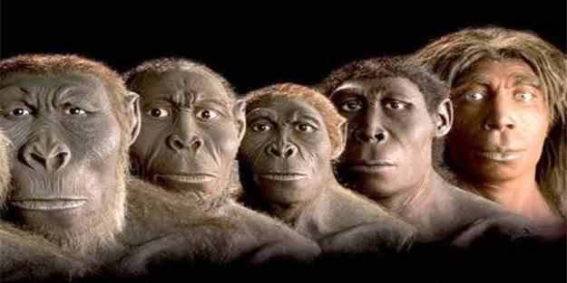 Evrim Teorisi yeni müfredata dahil edilmedi