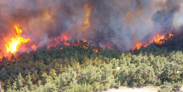 Gelibolu Yarımadası'nda korkunç yangın! Dehşete düşüren görüntüler