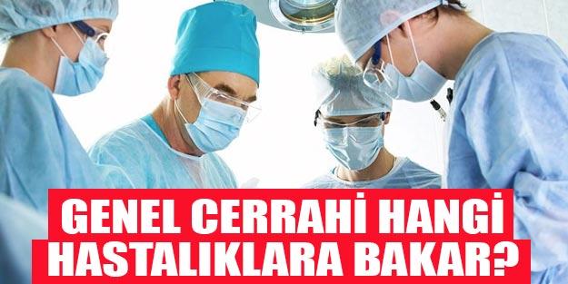 Genel cerrahi hangi hastalıklara bakar? Hastane randevu genel cerrahinin baktığı hastalıklar
