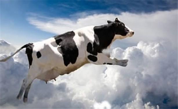 Gökten yağan en tuhaf 10 şey
