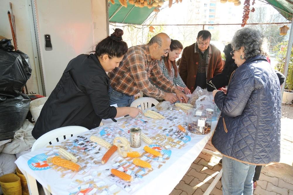 Gönüllü Serasında Tohum Takas Şenliği yapıldı