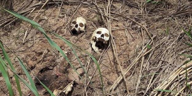 Görenler şaşkına döndü.. tam 17 toplu mezar