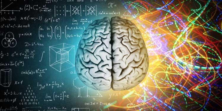 Güçlü bir hafıza için ne yenmeli ne yenmemeli?