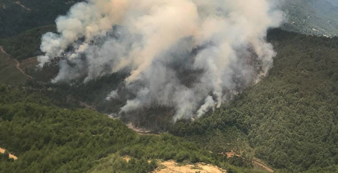 Hatay'da orman yangın: Havadan karadan müdahale ediliyor