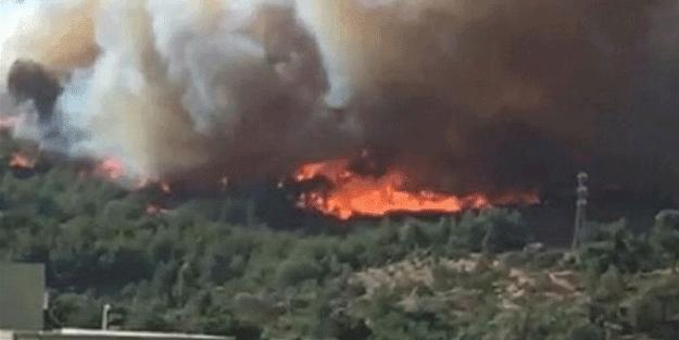 Hatay'da orman yangını! Yerleşim yerleri tehlike altında