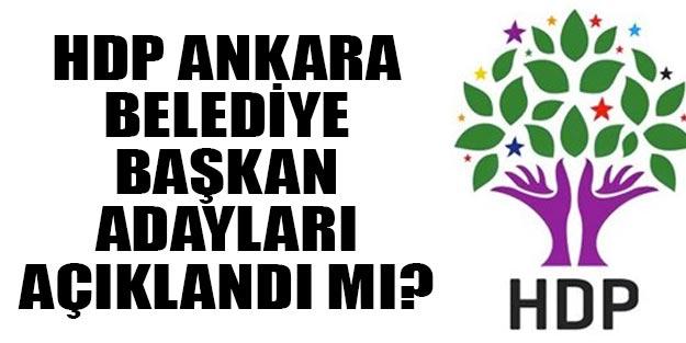 HDP Ankara belediye başkan adayları 2019