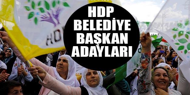 HDP belediye başkan adayları 2019 listesi