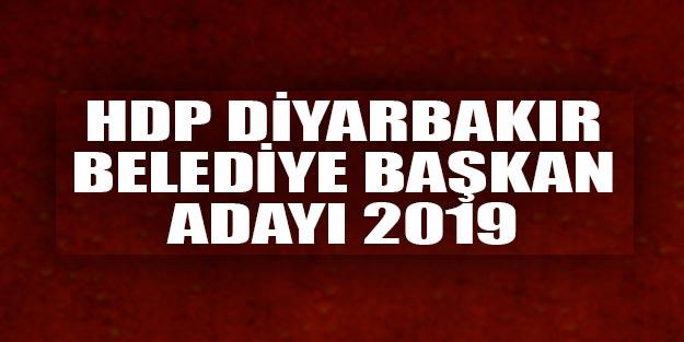 HDP Diyarbakır Büyükşehir Belediye başkan adayı kim?