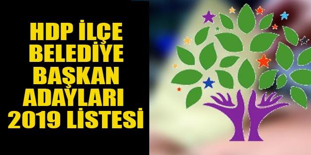 HDP ilçe belediye başkan adayları 2019 tam listesi